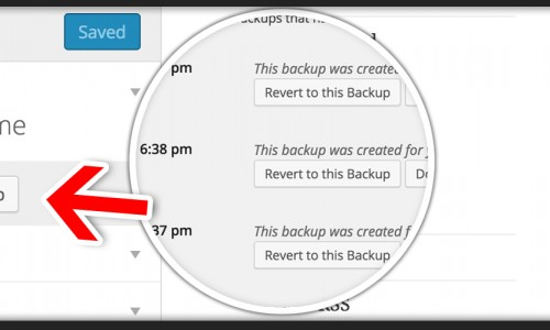 Backup your Customizer with a click!
